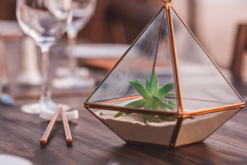 Some of the Things You Would Learn During a Terrarium Workshop